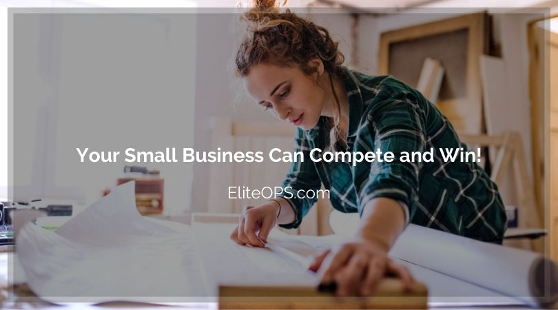 Your Small Business Can Compete and Win!